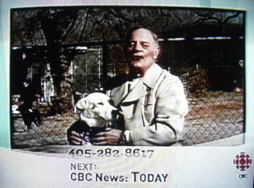 Chyron reads: Next: CBC News Today on top of another Chyron showing a phone number. Bald man with grey beard holding a dog in main picture