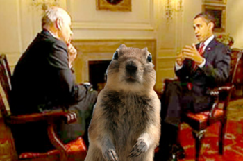 Squirrel stares out at us from meeting between Obama and diplomat