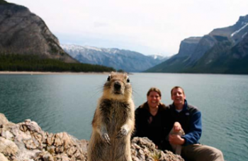 Squirrel staring out at us in front of woman and man at mountainside lake